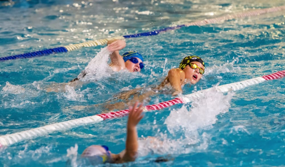 swimmers swim along tracks in sports pool for swimming