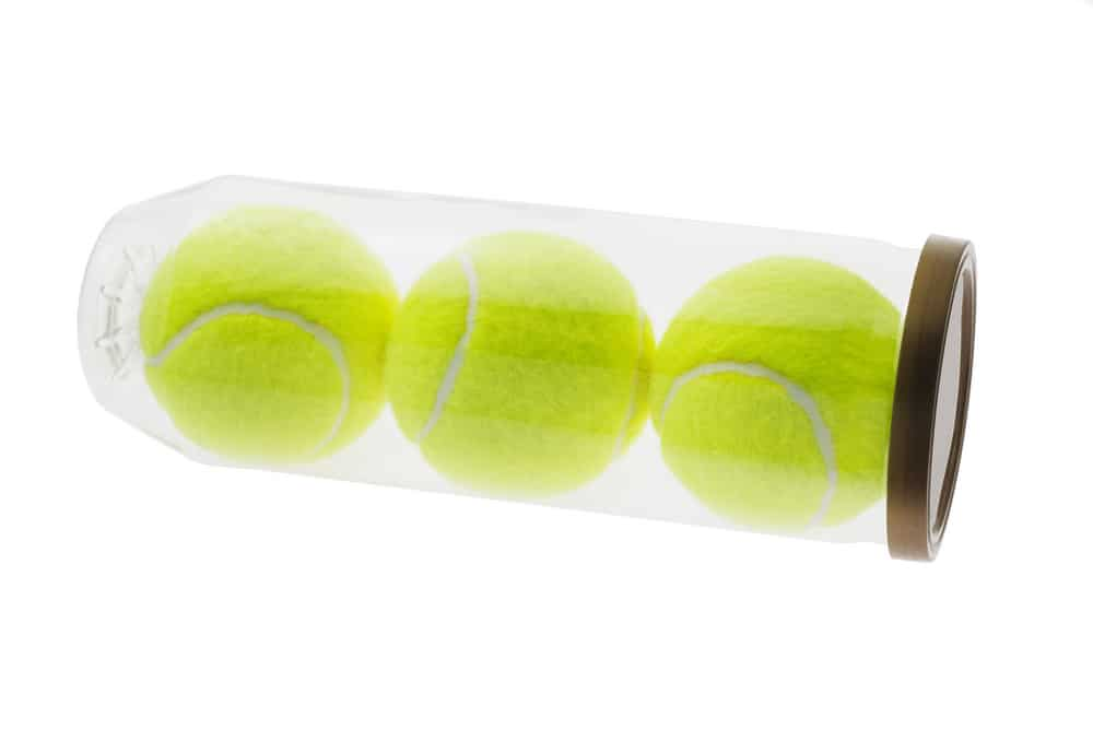 Three new yellow tennis balls in plastic container