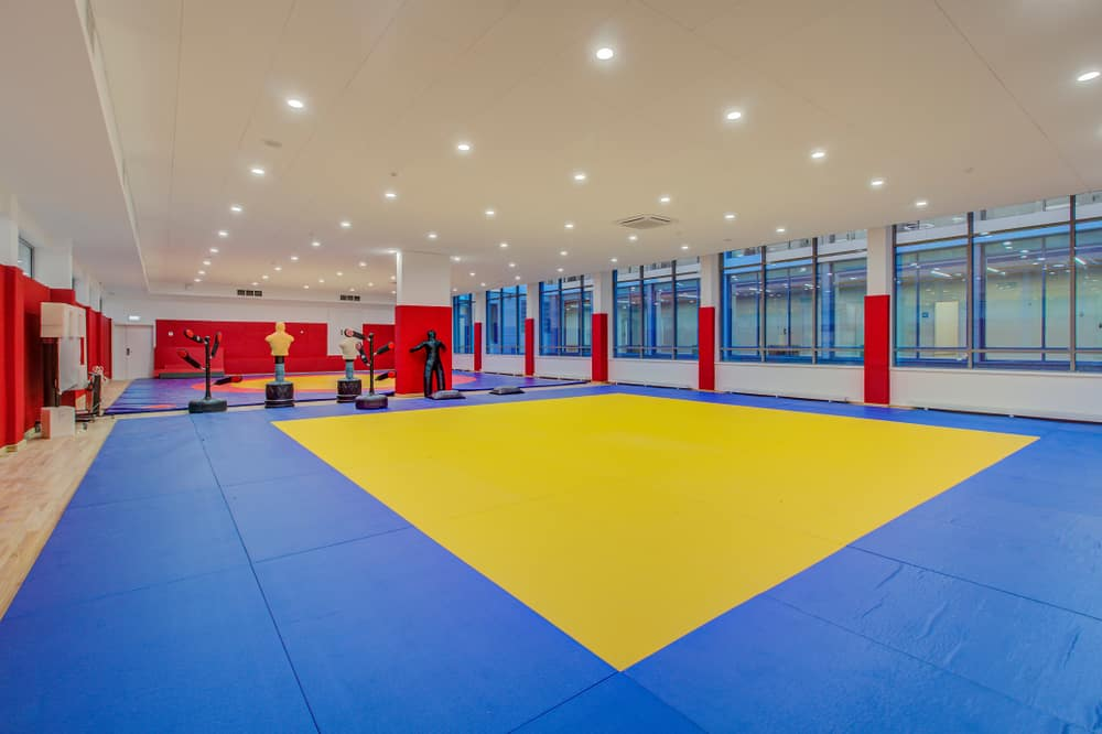Hall of martial arts with fighting ring