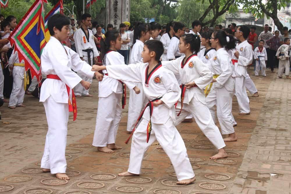Vietnam Taekwondo kid training in the park
