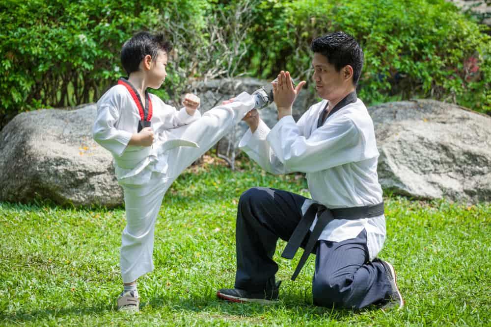 taekwondo kick in green park